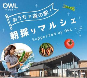 おうちで 道の駅!朝採りマルシェ~Supported by OWL~